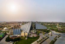 صورة فيديو- دبي سفاري بارك تفتتح أبوابها للضيوف